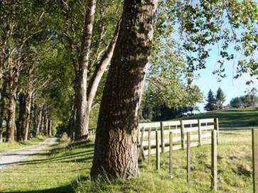 Taupo 31 Link Road, Wairakei